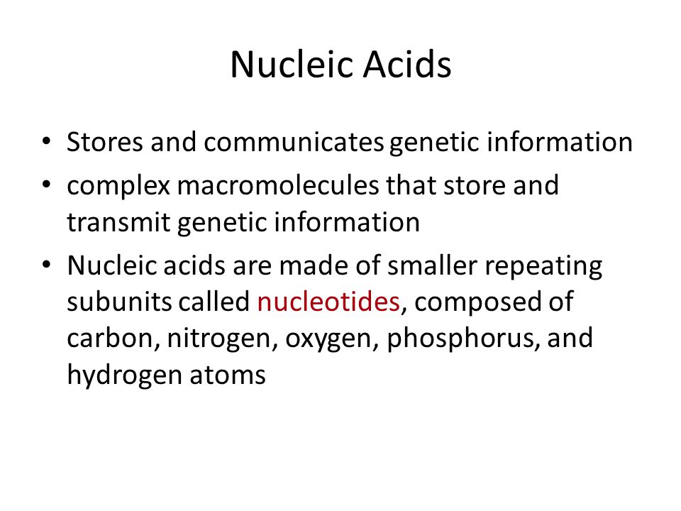 Nucleic Acids Stores and communicates genetic information