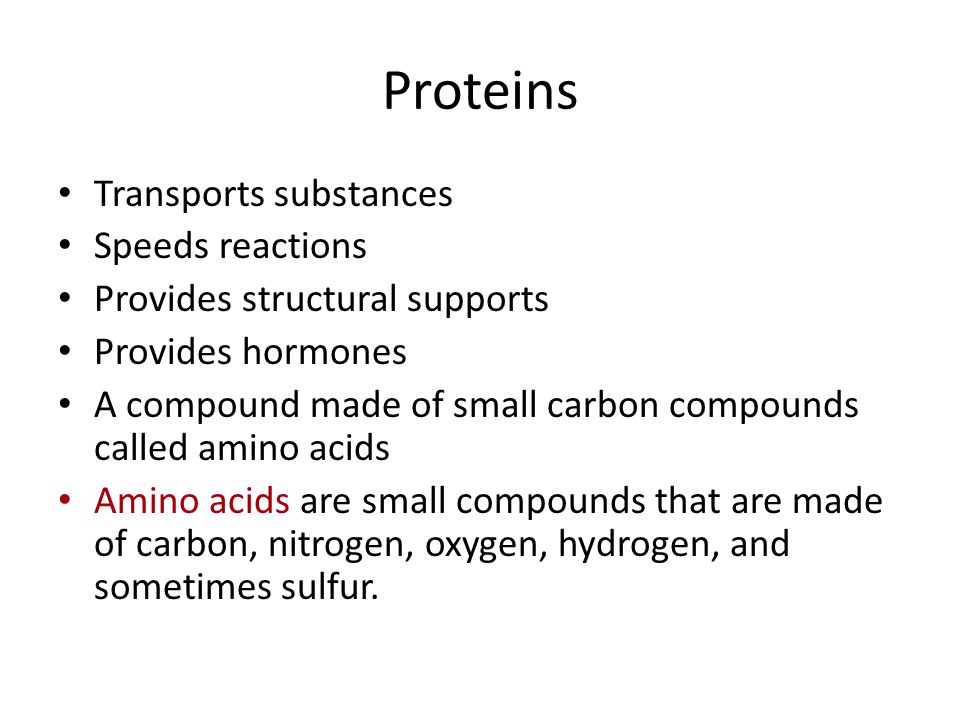 Proteins Transports substances Speeds reactions