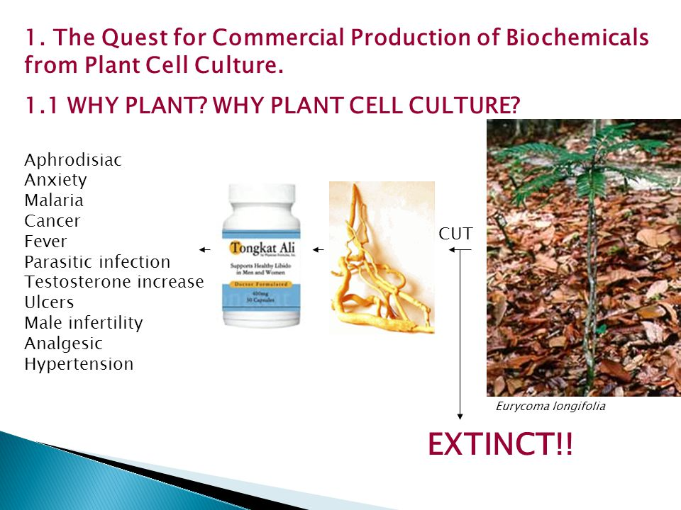 1. The Quest for Commercial Production of Biochemicals from Plant Cell Culture.