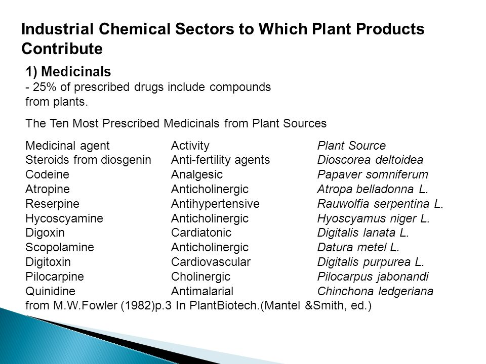 Industrial Chemical Sectors to Which Plant Products Contribute