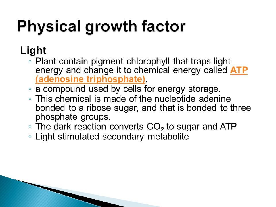 Physical growth factor