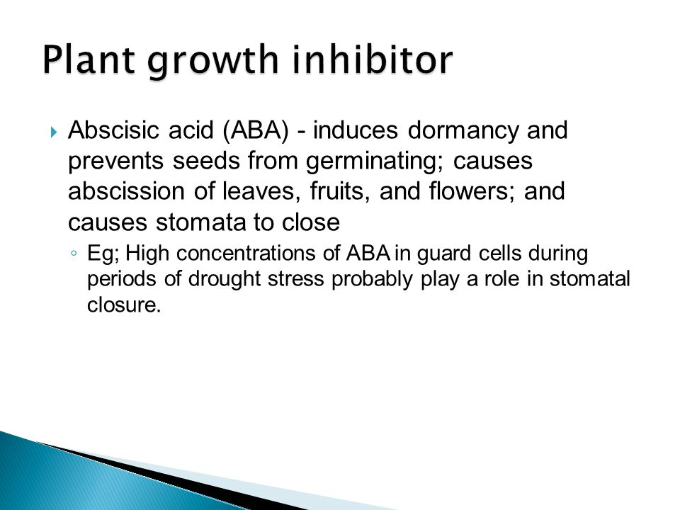 Plant growth inhibitor