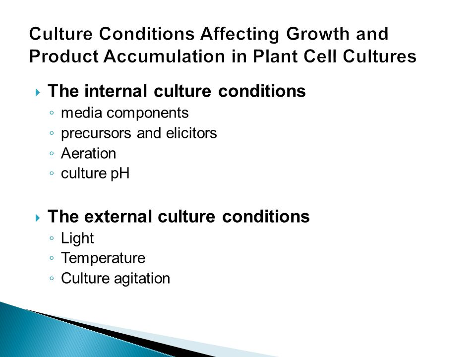 Culture Conditions Affecting Growth and Product Accumulation in Plant Cell Cultures