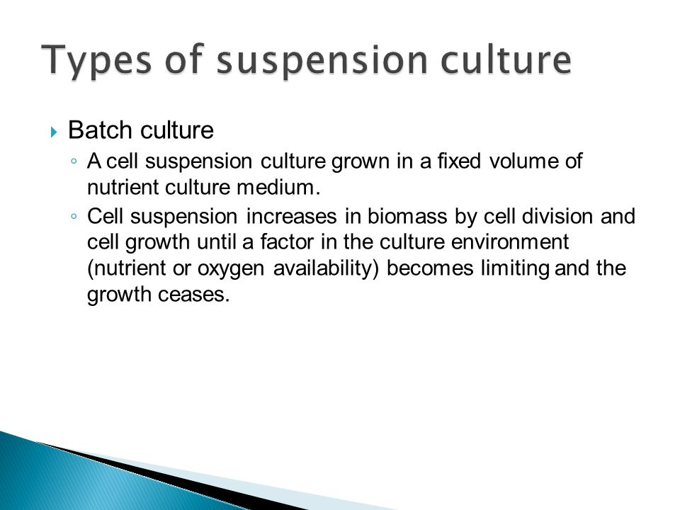 Types of suspension culture