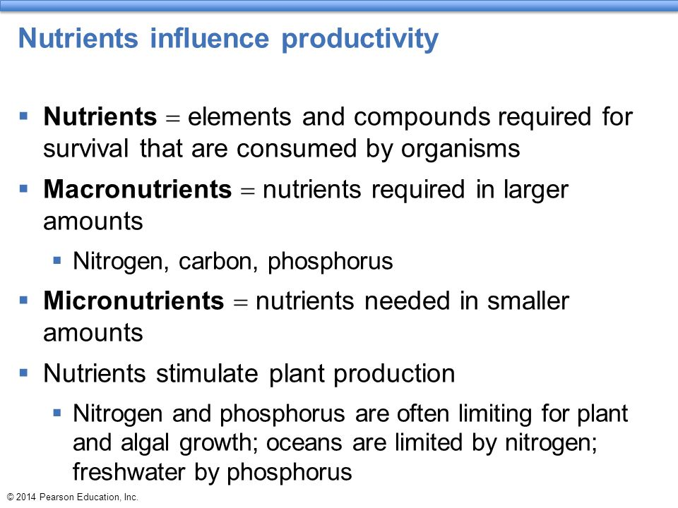 Nutrients influence productivity