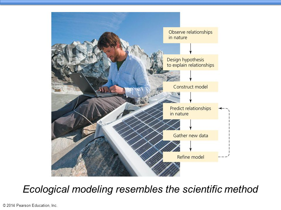 Ecological modeling resembles the scientific method