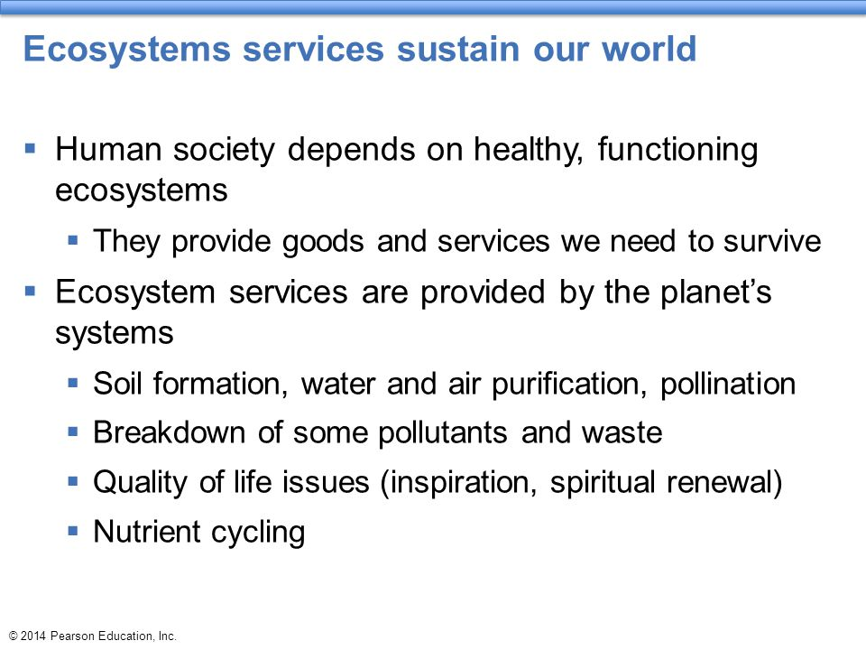 Ecosystems services sustain our world
