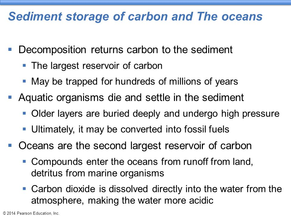 Sediment storage of carbon and The oceans
