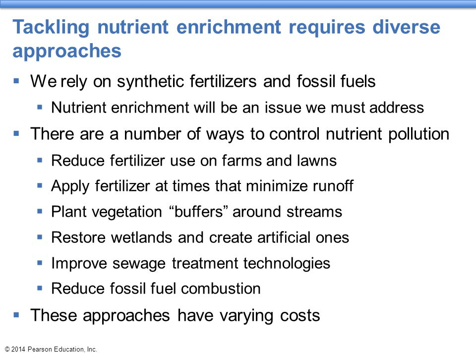 Tackling nutrient enrichment requires diverse approaches