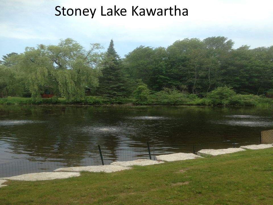Stoney Lake Kawartha