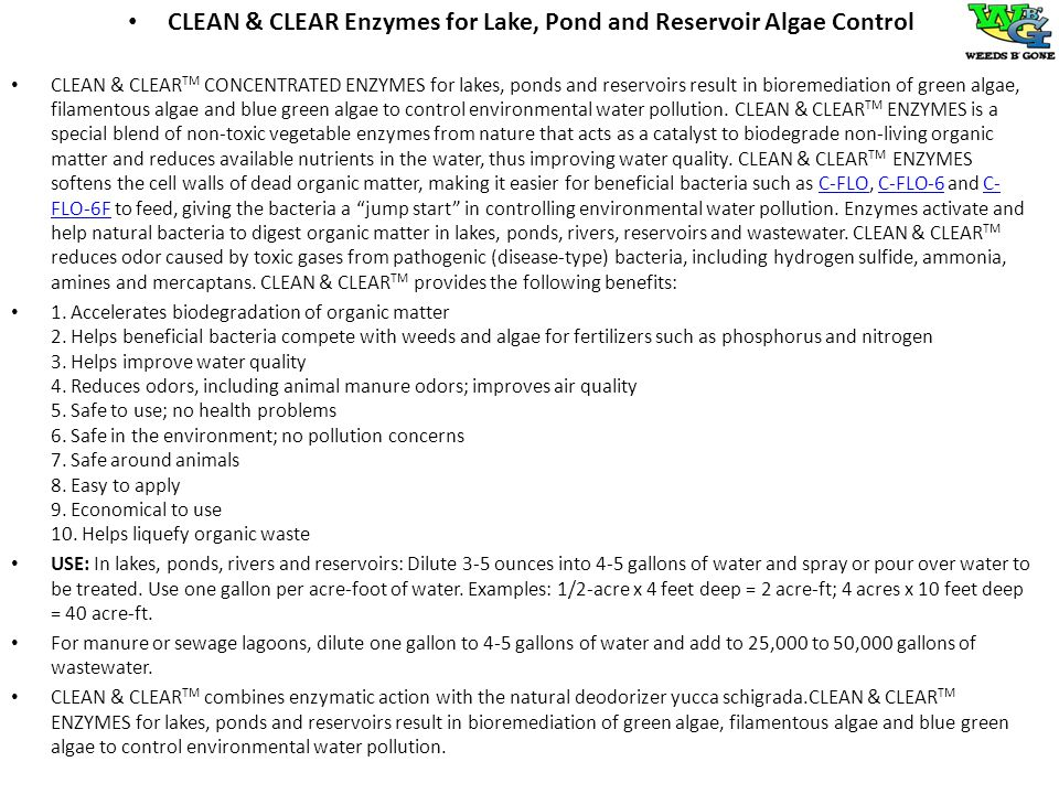 CLEAN & CLEAR Enzymes for Lake, Pond and Reservoir Algae Control