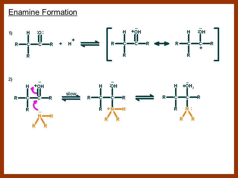 Enamine Formation