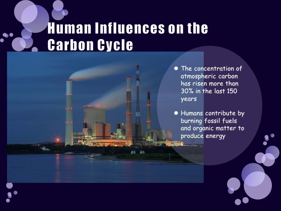 Human Influences on the Carbon Cycle