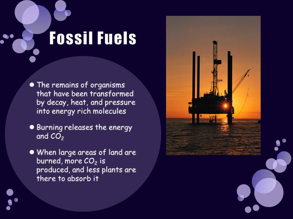 Fossil Fuels The remains of organisms that have been transformed by decay, heat, and pressure into energy rich molecules.