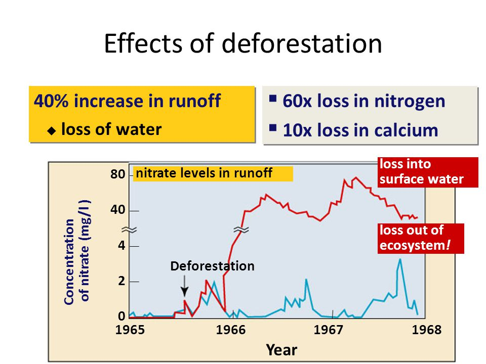 Effects of deforestation