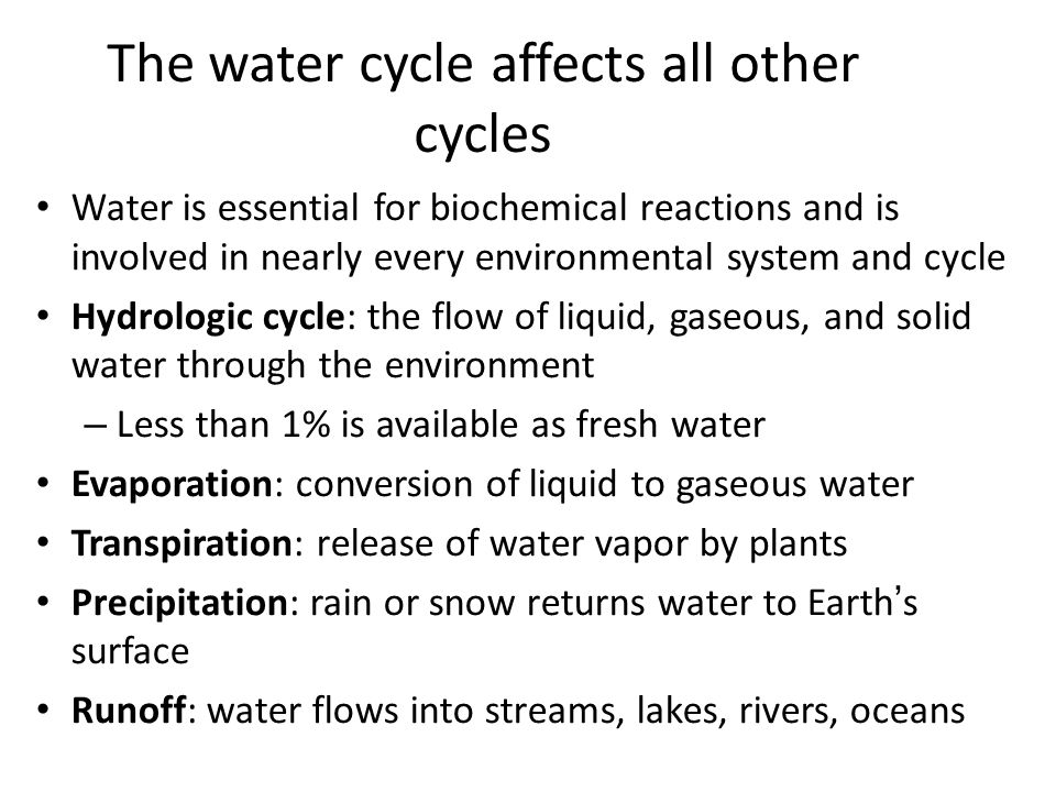 The water cycle affects all other cycles
