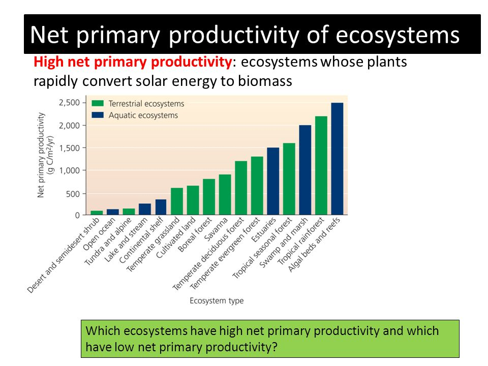 Net primary productivity of ecosystems