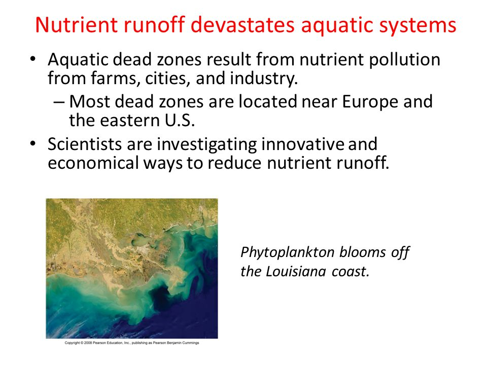 Nutrient runoff devastates aquatic systems