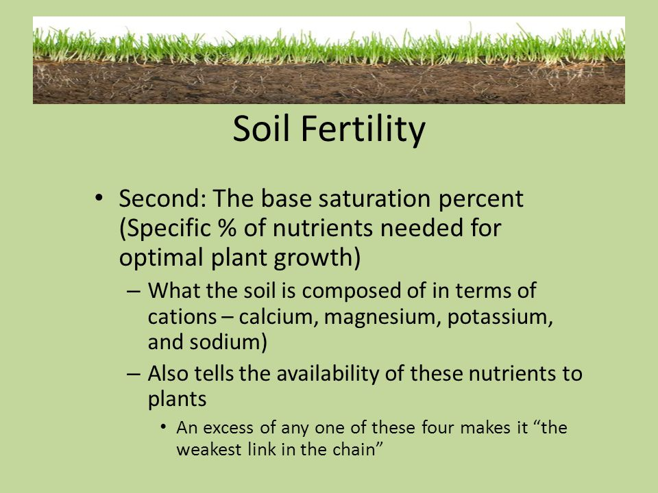 Soil Fertility Second: The base saturation percent (Specific % of nutrients needed for optimal plant growth)
