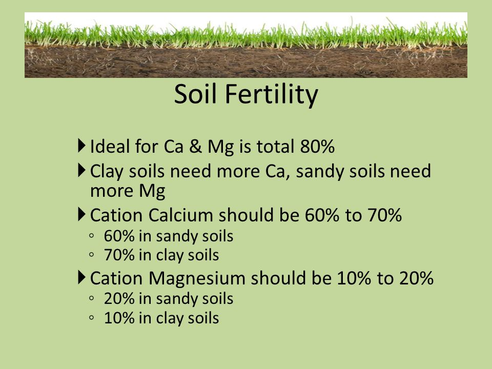 Soil Fertility Ideal for Ca & Mg is total 80%