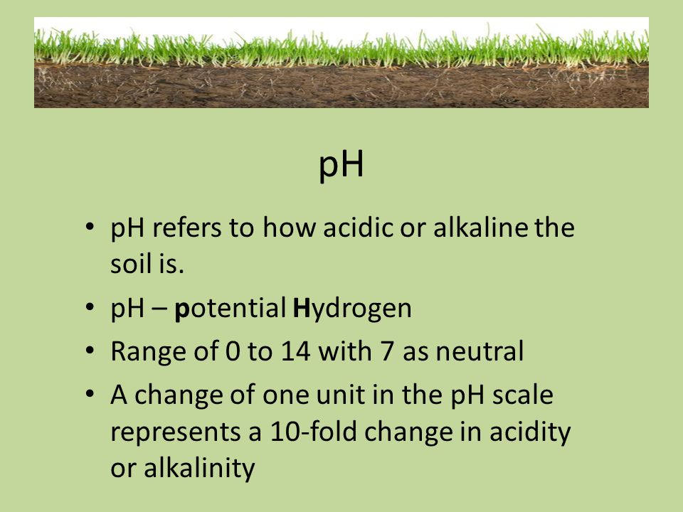 pH pH refers to how acidic or alkaline the soil is.