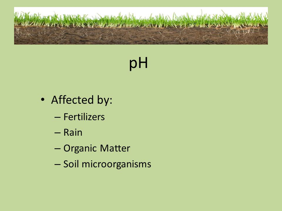 pH Affected by: Fertilizers Rain Organic Matter Soil microorganisms