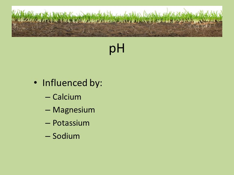 pH Influenced by: Calcium Magnesium Potassium Sodium