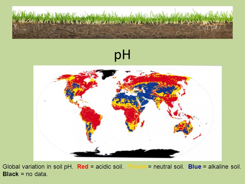 pH Global variation in soil pH. Red = acidic soil.