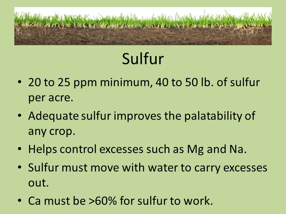 Sulfur 20 to 25 ppm minimum, 40 to 50 lb. of sulfur per acre.