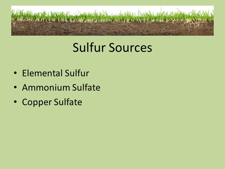 Sulfur Sources Elemental Sulfur Ammonium Sulfate Copper Sulfate