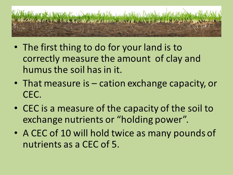 The first thing to do for your land is to correctly measure the amount of clay and humus the soil has in it.
