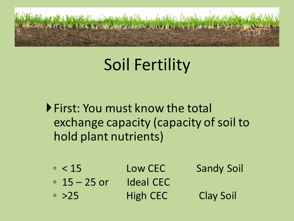 Soil Fertility First: You must know the total exchange capacity (capacity of soil to hold plant nutrients)