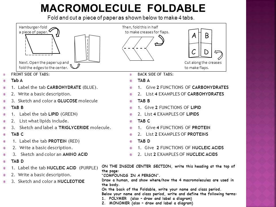 MACROMOLECULE FOLDABLE