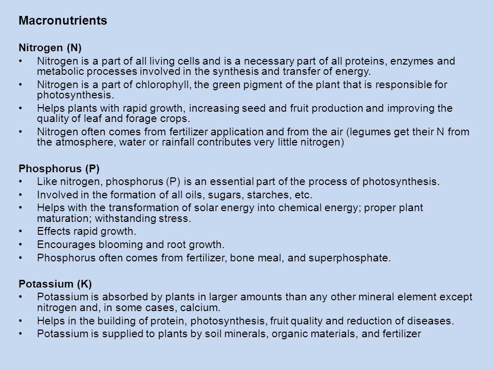Macronutrients Nitrogen (N)