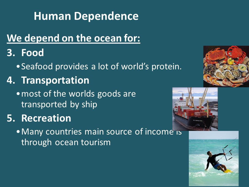 Human Dependence We depend on the ocean for: Food Transportation