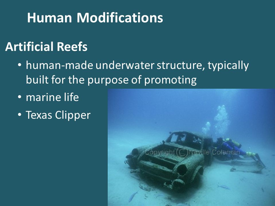 Human Modifications Artificial Reefs