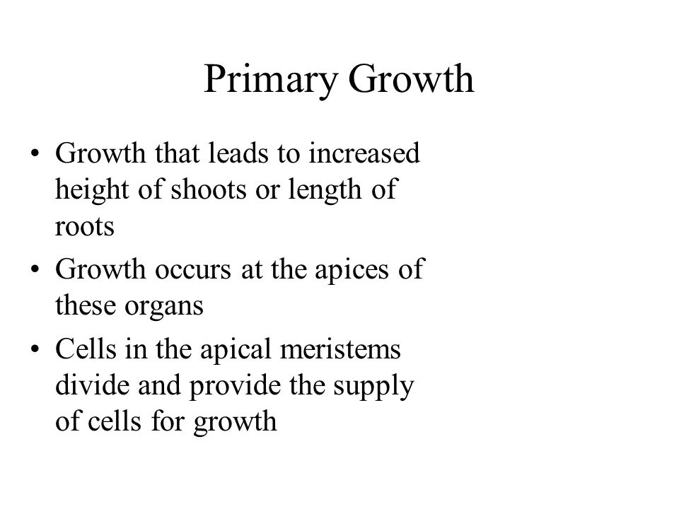 Primary Growth Growth that leads to increased height of shoots or length of roots. Growth occurs at the apices of these organs.
