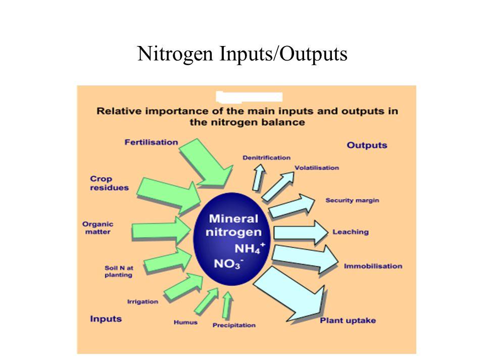 Nitrogen Inputs/Outputs