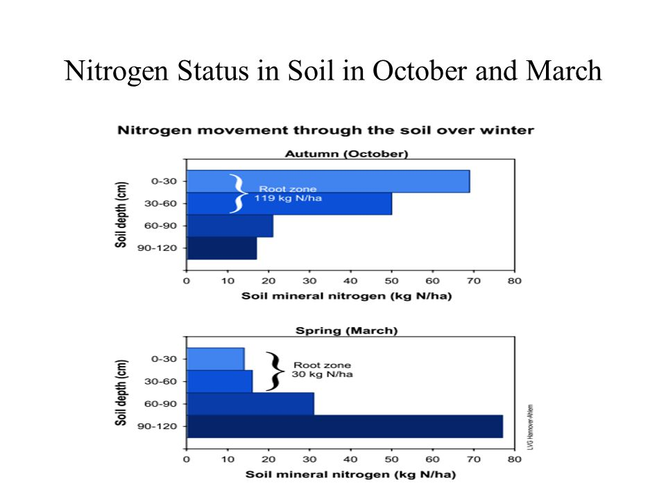 Nitrogen Status in Soil in October and March