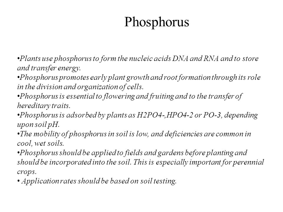 Phosphorus Plants use phosphorus to form the nucleic acids DNA and RNA and to store and transfer energy.