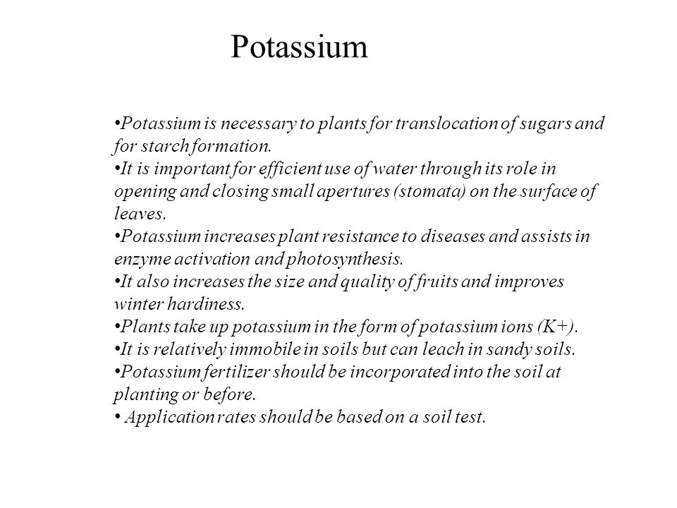 Potassium Potassium is necessary to plants for translocation of sugars and for starch formation.