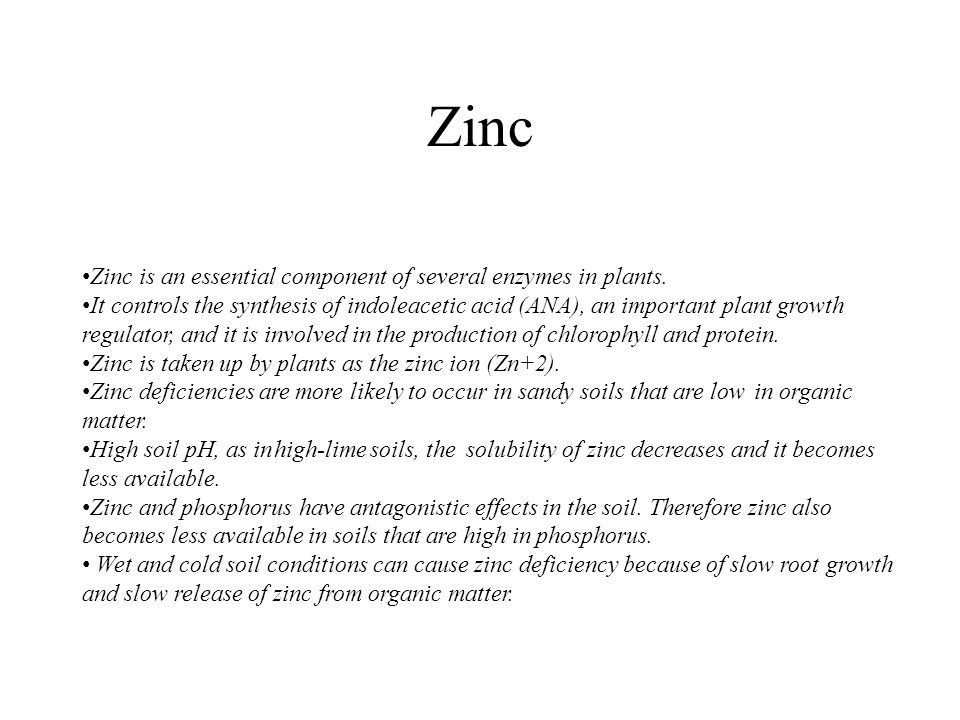 Zinc Zinc is an essential component of several enzymes in plants.