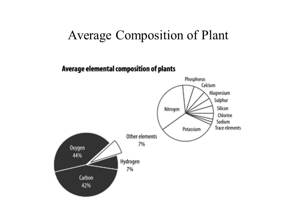 Average Composition of Plant