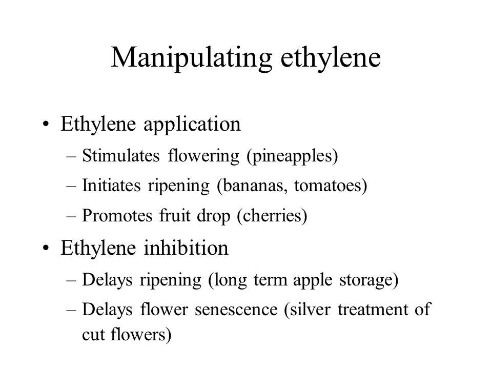 Manipulating ethylene