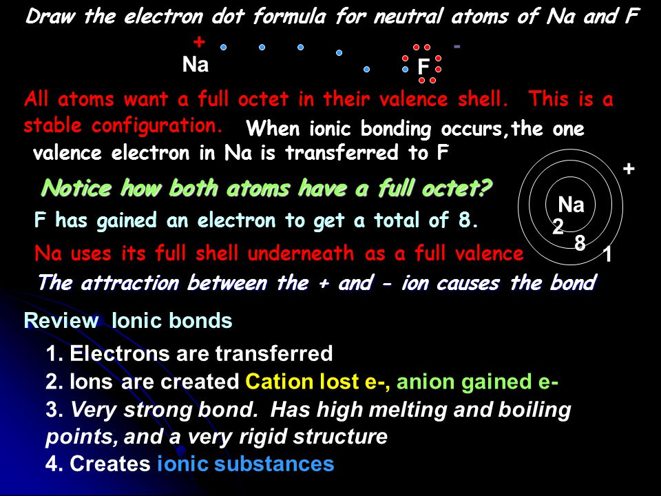 Draw the electron dot formula for neutral atoms of Na and F