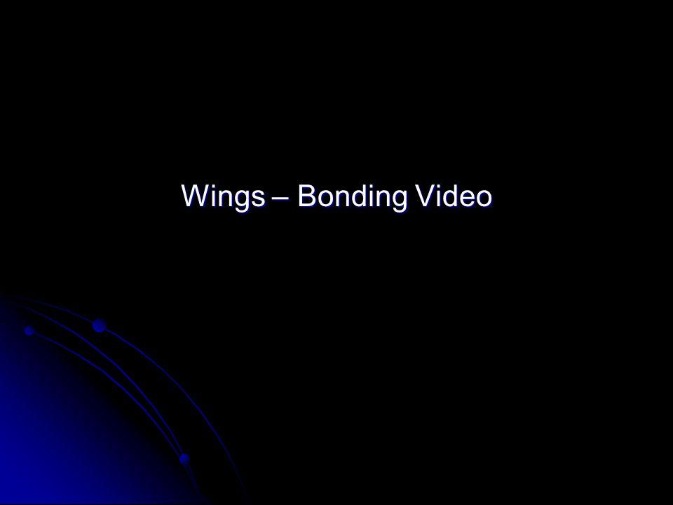 Wings – Bonding Video