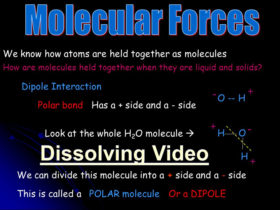 Dissolving Video Molecular Forces