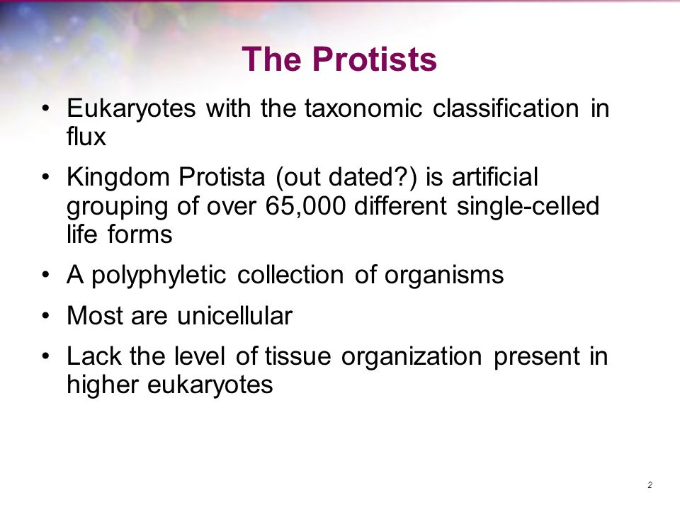 The Protists Eukaryotes with the taxonomic classification in flux