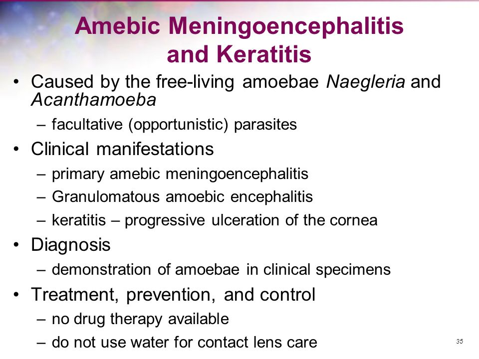 Amebic Meningoencephalitis and Keratitis