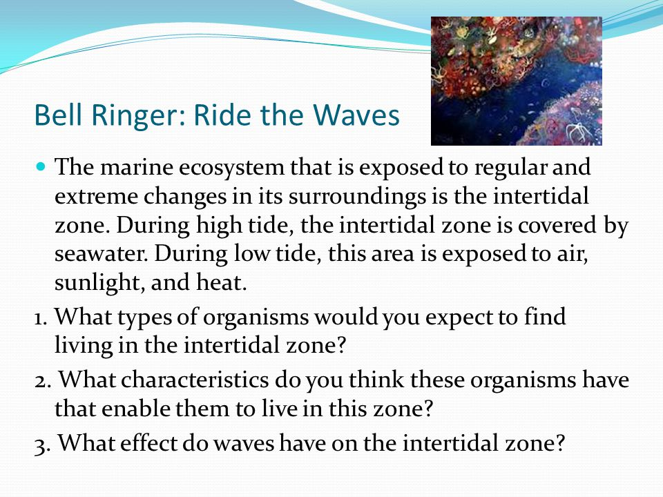 Bell Ringer: Ride the Waves